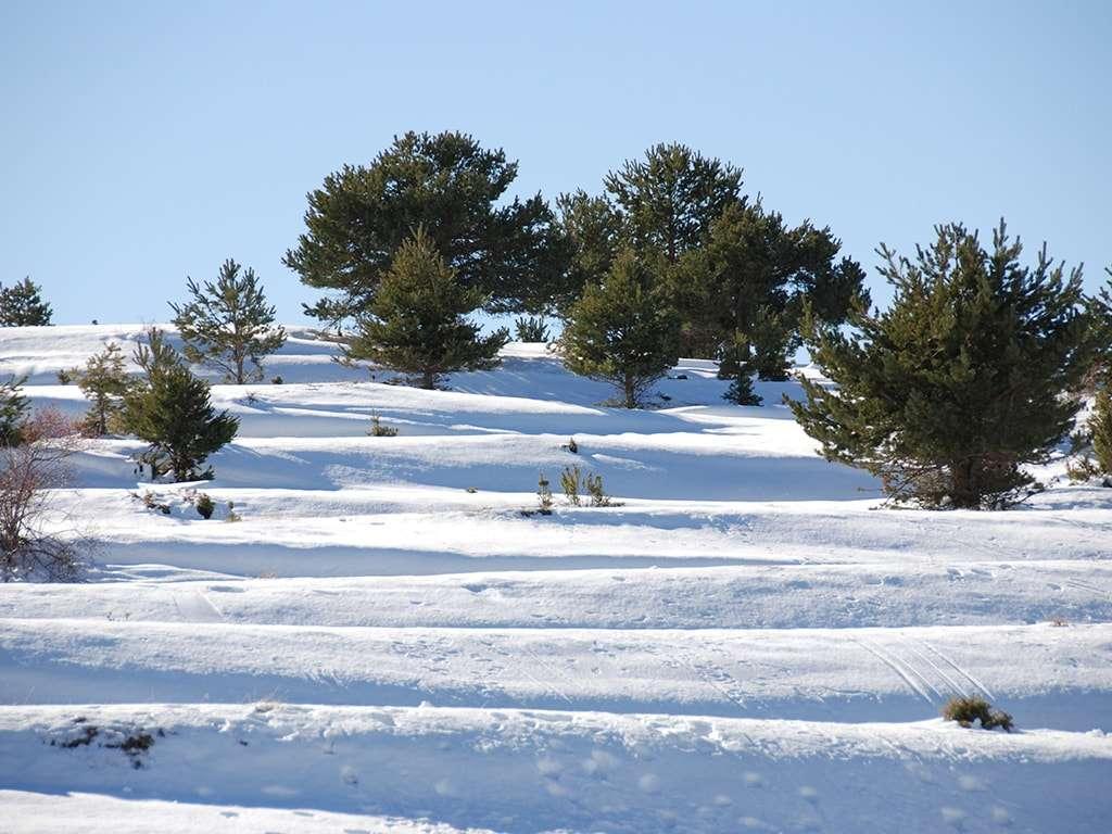 Casa rural en Valdelinares - Estación de esquí de Valdelinares